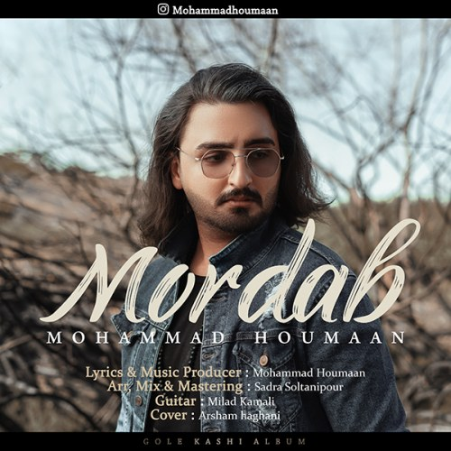 دانلود موزیک جدید محمد هومان مرداب