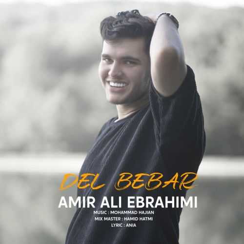 دانلود موزیک جدید امیر علی ابراهیمی دل ببر